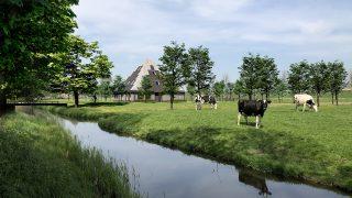 vrijstaand duurzame houtskeletbouw Barentsz stolpwoning met stalen dak